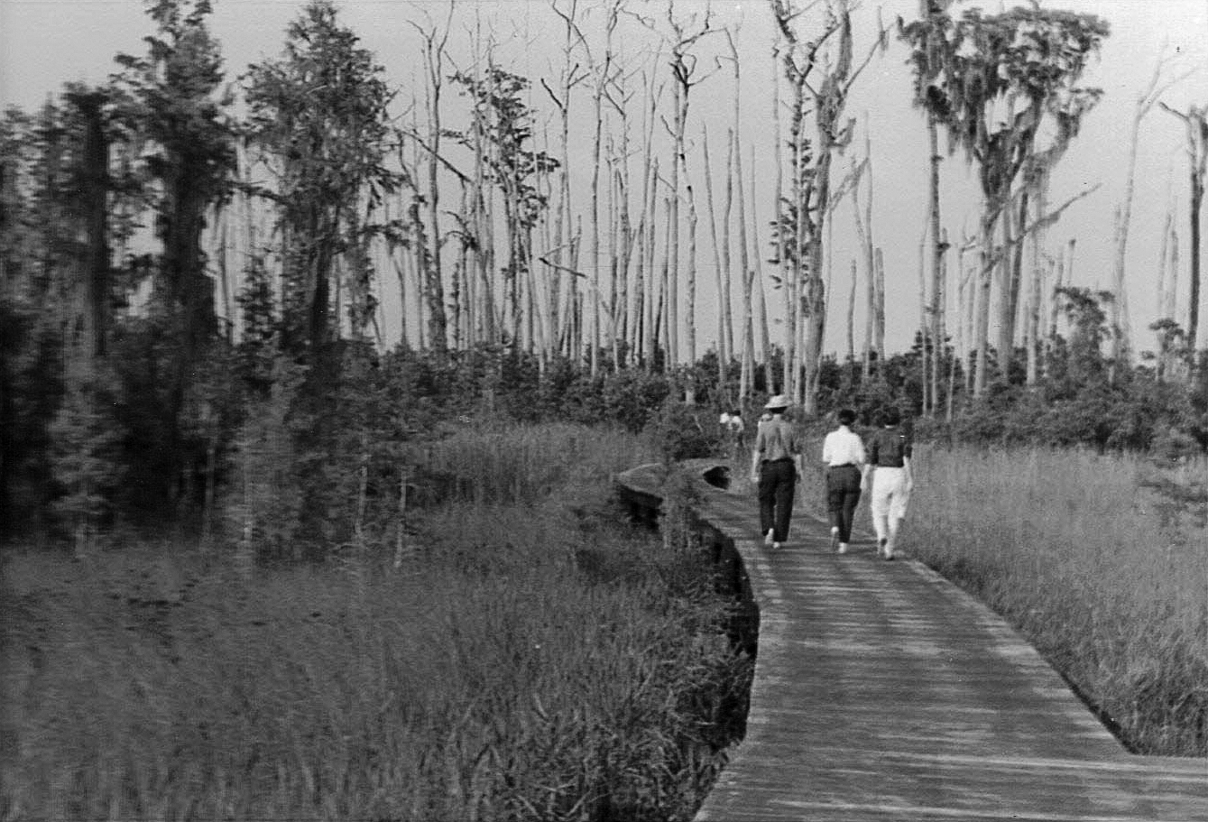 Boardwalk in 1969